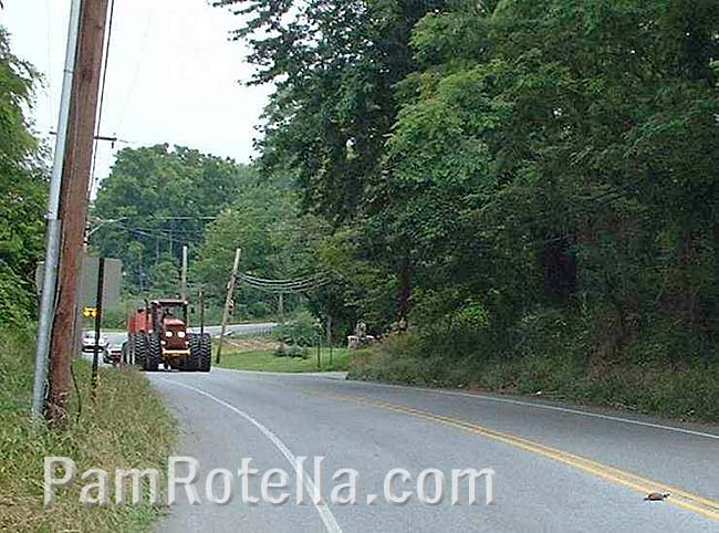 Farm machinery and turtle on road