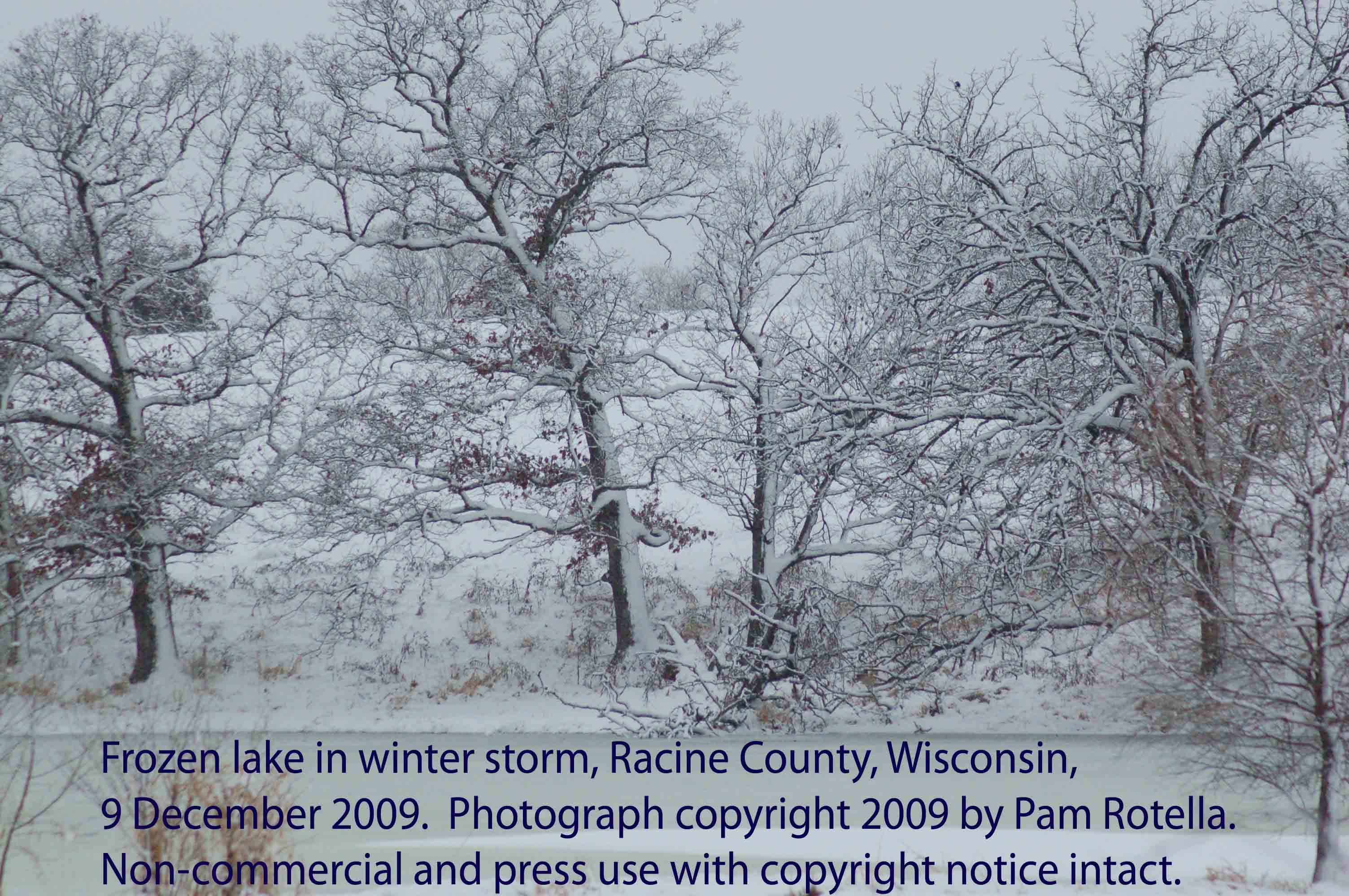Winter storms, frozen lake, Racine County, WI, 9 Dec 2009