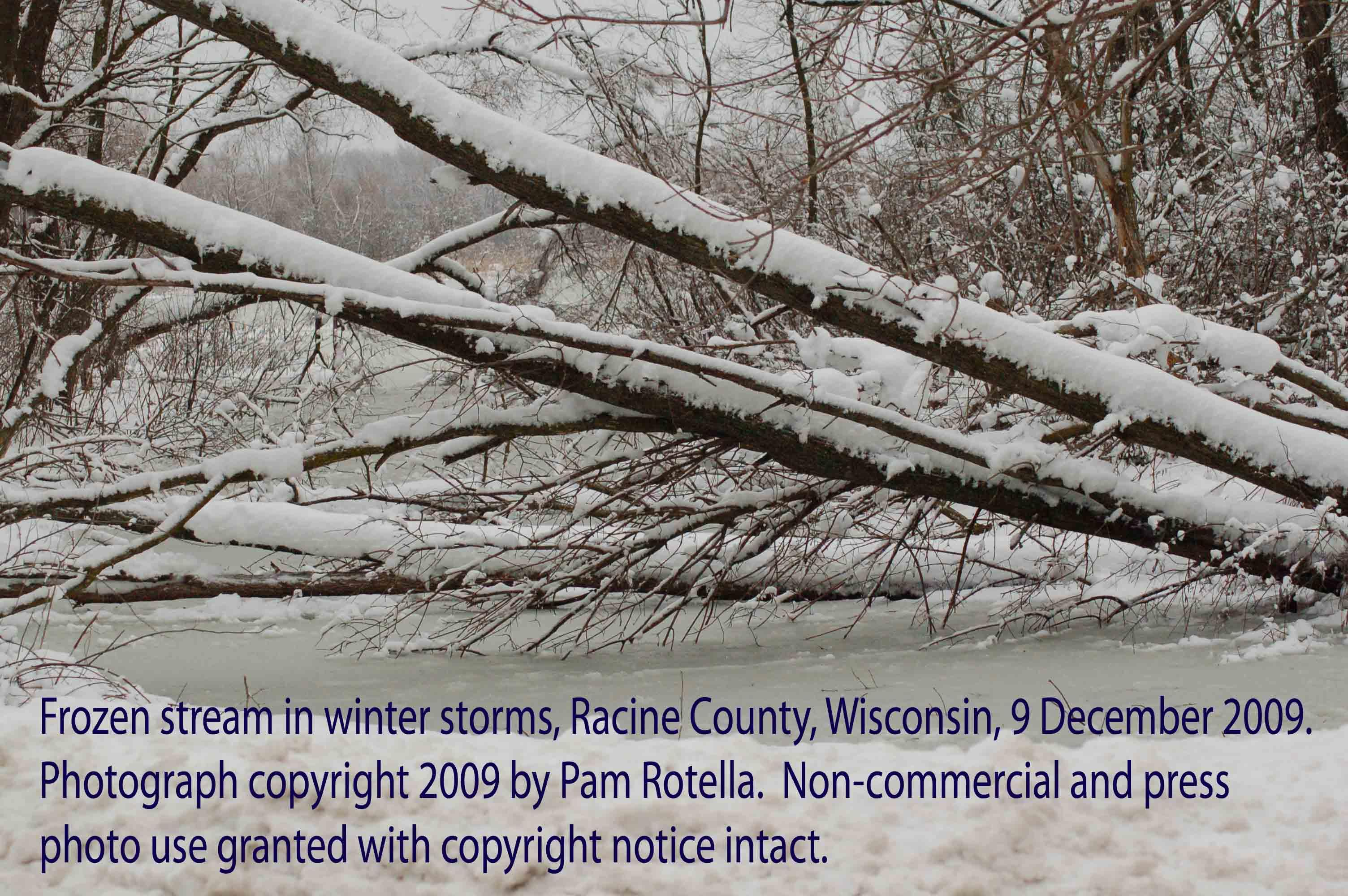 Winter storms, frozen stream, Racine County, WI, 9 Dec 2009