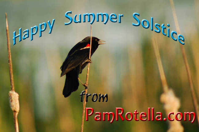 Summer Solstice card to readers