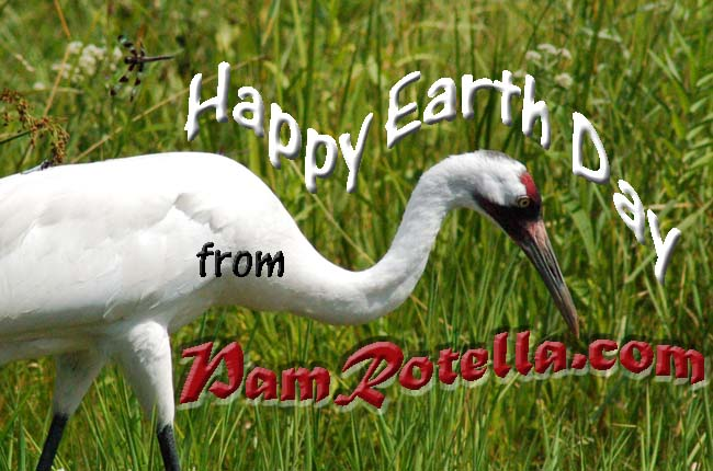 Earth Day card to readers 2011, photo by Pam Rotella