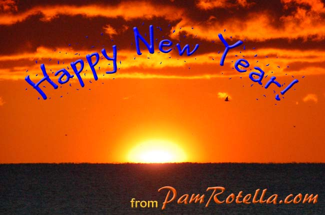 New Year's Day card to readers 2012