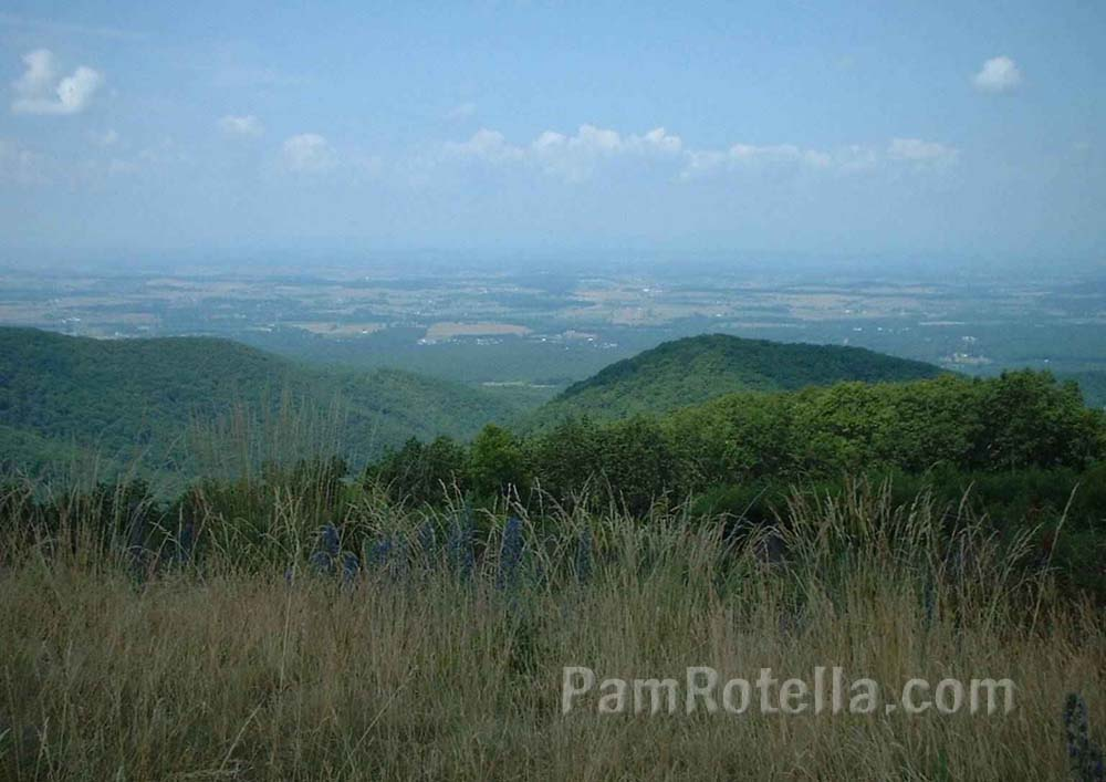 Man-made landscape in valley of Skyline Drive, Virginia, photo by Pam Rotella