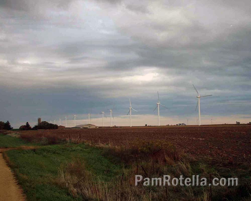 Wisconsin windmill farm