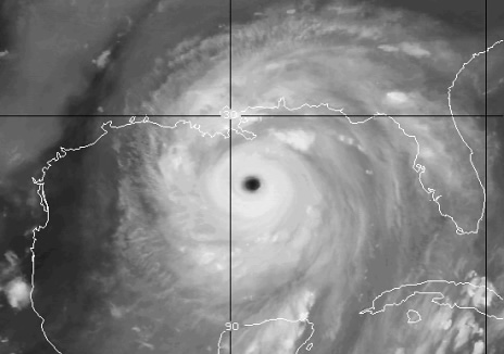 Satellite image of Katrina from davesdaily.com